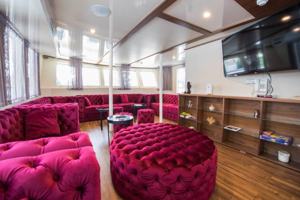 MS-Yolo-Lounge