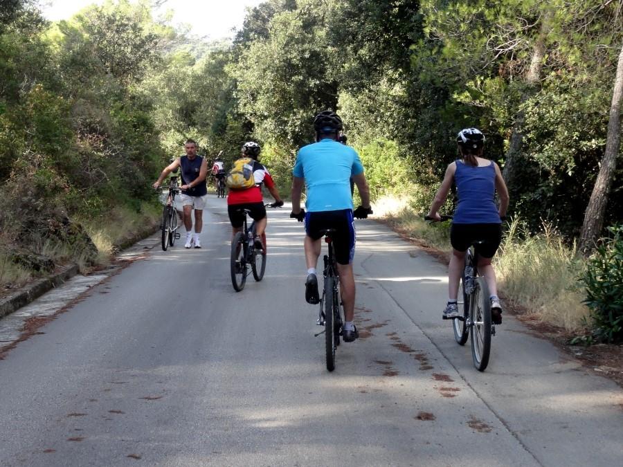 bike_cruise_3
